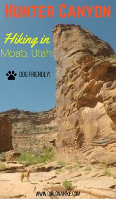 Hiking in Hunter Canyon, Moab, Hiking in Moab with Dogs