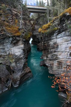 Athabasca falls in Jasper National Park - Alberta, Canada - Pierre Leclerc Oh The Places You'll Go, Places To Travel, Places To Visit, Jasper National Park, National Parks, Beautiful World, Beautiful Places, Amazing Places, Monuments
