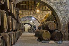 Old cellar with rows of wooden wine barrels by Anastasy Yarmolovich #AnastasyYarmolovichFineArtPhotography  #ArtForHome #Food #Drink