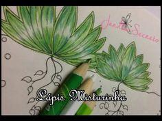 MISTURINHA - folhas do Jardim Secreto | Luciana Queiróz #LuTodoDia