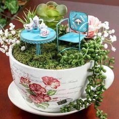 Suculentas Diy, Indoor Fairy Gardens, Tea Gardens, Indoor Gardening, Teacup Crafts, Tea Party Theme, Party Themes, Party Ideas, Fairy Furniture