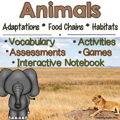 Animals: Adaptations, Food Chains and Habitats Animal Vocabulary Cards, Assessments and Activities: Fun & engaging resources to supplement your Animals Unit! Sorting Activities, Vocabulary Activities, Animal Activities, Physical Adaptations, Animal Adaptations, Science Ideas, Science Lessons, Additional Science, Leveled Reading Passages