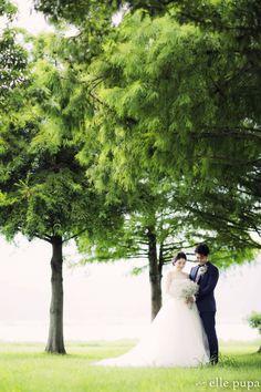 滋賀*日吉大社&琵琶湖で前撮り |*elle pupa blog*