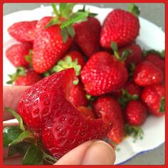 Fresh, Farmers' Market Strawberries for dessert! Raw Desserts, Farmers Market, Strawberries, Great Recipes, Deserts, Fresh, Food, Strawberry Fruit, Farmers Market Display