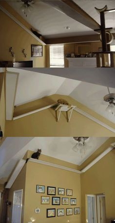 cool-cat-house-wood-modding-climbing
