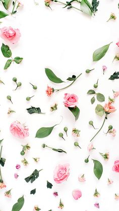 P i n t e r e s t sarahesilvester phone backgrounds iphone wallpaper, scree Cute Flower Wallpapers, Pretty Backgrounds, Flower Backgrounds, Phone Backgrounds, Wallpaper Backgrounds, Iphone Wallpapers, Wallpaper Quotes, Wallpaper For Your Phone, Cellphone Wallpaper