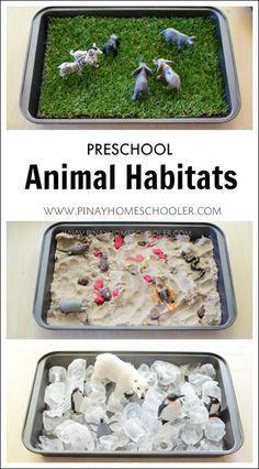 Preschool Animal Habitats using Sensorial Materials | The Pinay Homeschooler