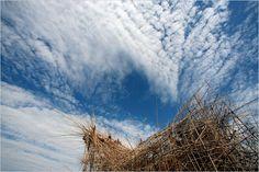 Doug and Mike Starn's 'Big Bambú' Dismantled at the Met - The New York Times
