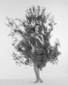 Nina von Schlebrugge, ca. 1959 © William Helburn / Staley-Wise Gallery New York