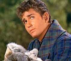 Little Joe Cartwright -  Michael Landon