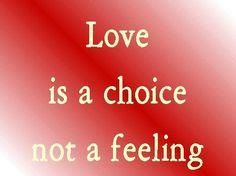 (Love) bears all things, believes all things, hopes all things, endures all things.  Love never fails.. 1 Corinthians 13:7,8 NASB