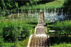 Une évocation de l'histoire des jardins depuis la période romaine en 13 tableaux naturels aussi surprenants qu'envoûtants où le visiteur retrouve les invariants des jardins du Monde : eau, mouvements du vent, terrasses, végétaux, perspectives…
