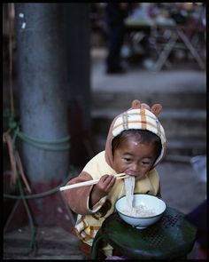 Baby Bear eating noodles in Yunnan Province, China