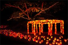 Wow... just wow! RISE of the Jack O'Lanterns - Site