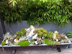 Modern Tropical Courtyard - A grouping of succulents in a copper trough is one of the focal points in this small space garden. Contemporary elements like the metal containers mix with more exotic features. Seashells decorate the succulent planting. Backyard Garden Landscape, Small Backyard Gardens, Small Space Gardening, Unique Gardens, Garden Oasis, Large Backyard, Balcony Garden, Garden Landscaping, Succulent Planter Diy