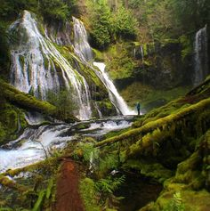 Tag along with traveler/attorney Matthew Cohen as he photographs the majestic sights of the Pacific Northwest. Mountains, incredible forests and, of course, waterfalls will inspire you to get out your hiking boots.  Follow Matthew on Instagram for more »   - HouseBeautiful.com