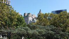 #newyork #newyorkcity #ny #nyc #urban #metropolis #bigapple #manhattan #architecture #city #arquitectura #archilovers #architecturelovers #bigcity #cities #architexture #architect #citylife #cityscape #urbanfurniture #metropolitan #metro #town #megacity #downtown #ciudad #centralpark #park #trees #building