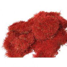 mousse plate stabilisée rouge 2.5kg sur infinienature.com