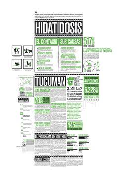 Infografía - Hidatidosis on Behance