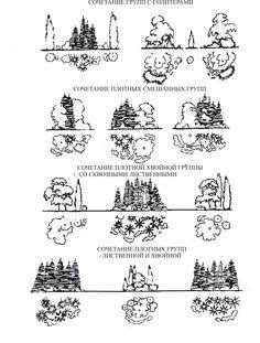 Методичка по ландшафтному проектированию