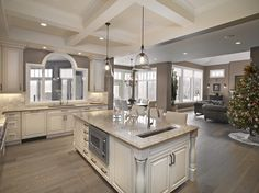 Open Plan Kitchen and Dinning Room