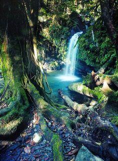 Rio Grande, Puerto Rico -  via Amazing Places