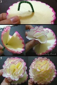 DIY tissue paper flowers.