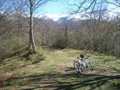 Entre los bosques de Uznayo, a los pies del Pico Tres Mares
