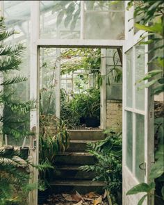 The Secret Garden . the Secret Garden . Secret Garden Design Ideas How to Create Your Own Secret The Secret Garden, Secret Gardens, Plant Aesthetic, Aesthetic Green, Aesthetic Style, Houseplants, Indoor Plants, Indoor Gardening, Vegetable Gardening