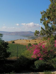 Looking down to Sea of Galilee from Mount of Beatitudes, Israel