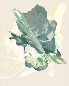 Contemporary photography and artwork Mauren Brodbeck, Loyalland, Untitled 07 Contemporary Photography, Contemporary Art, Filmmaking, Abstract, Artist, Artwork, Flowers, Color, Cinema