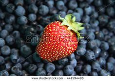 Strawberry Blueberry Stock Photos, Images, & Pictures | Shutterstock