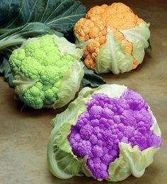 Green, orange & purple cauliflower!