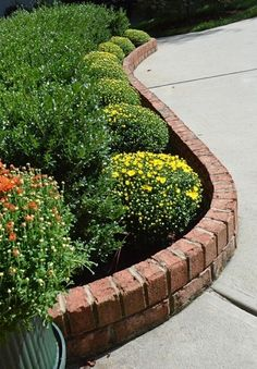 Garden edging is what gives a garden a neat, clean appearance. Do you want some innovative garden edging ideas? Here are garden edging ideas for your garden. Plants, Lawn Edging, Landscaping With Rocks, Brick Garden, Raised Garden, Brick Garden Edging, Diy Garden, Garden Design, Garden