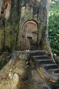Fairy Doors for Trees. We should do something similar in our local woods. It would be enchanting for children out for a walk.