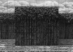 Michael Amery | Trees-by-man---22
