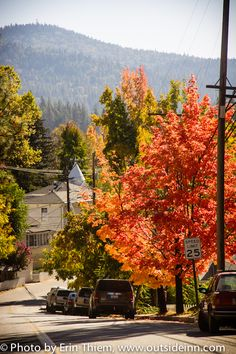 Nevada City California Gold Mining Town Fall Colors photo by Erin Thiem/Outside Inn Nevada City California, California Travel, California Living, Northern California, Outdoor Art, Outdoor Travel, City Information, Nevada Mountains, Grass Valley