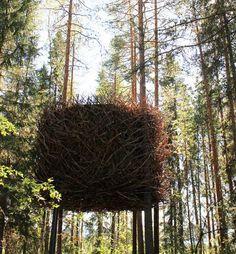 """Baumhaus """"Bird's Nest"""" in einem Baumhaus-Hotel"""