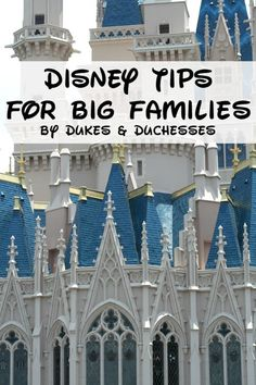 great Disney tips for big families or large groups