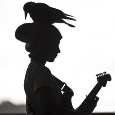 Magpie and rock star