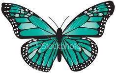 Teal (ovarian cancer) butterfly