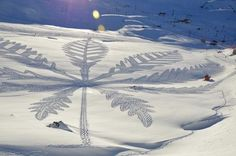 Snow Art. Simon Beck.  Spending long days walking in the snow, artist Simon Beck creates his large scale snow art. The patterns are made completely by foot; Beck wears snowshoes to create them.
