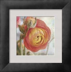 AllPosters - Sunburst  Art Print - 30 x 31 cm  Donna Geissler