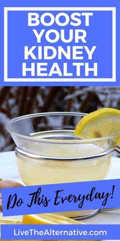 Healthy Kidneys, Clean Kidneys, Kidney Recipes, Kidney Foods, Low Potassium Recipes, Kidney Detox Cleanse, Improve Kidney Function, Smoothie Recipes With Yogurt, Kidney Friendly Foods