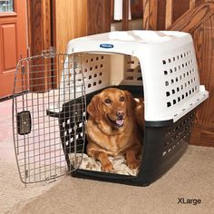 Lightweight, hard-sided crates provide roomy, airy home containment for your pet