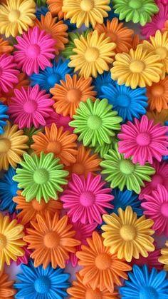Rainbow of Daisies Wallpaper. Rainbow Wallpaper, Colorful Wallpaper, Flower Wallpaper, Taste The Rainbow, Over The Rainbow, World Of Color, Color Of Life, Cellphone Wallpaper, Iphone Wallpaper