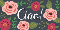 Ciao Bella #Font : beautiful and unique - comes with typeface and #ornament fonts. Everything seen here can be made with the #CiaoBella font family