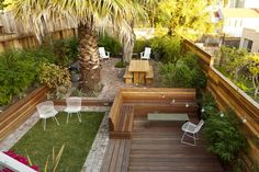 modern landscaping: benches and bamboo for privacy