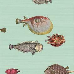 Aquario 97-10030
