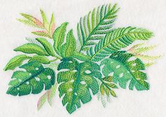 Tropical Leaves in Watercolor 1 design (M4040) from www.Emblibrary.com